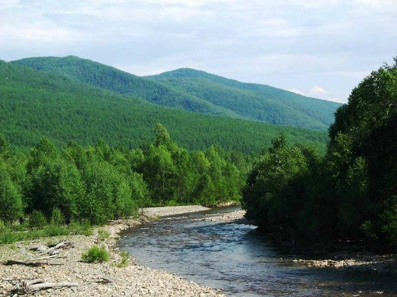 Жители РФимеют право набесплатное получение земельных участков на далеком Востоке