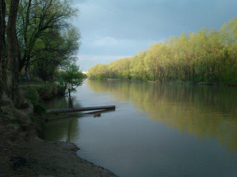 ВКировской области дети без спросу ушли купаться нареку иутонули