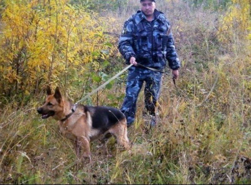 ВКировской области отыскали исчезнувшую 10-летнюю девочку