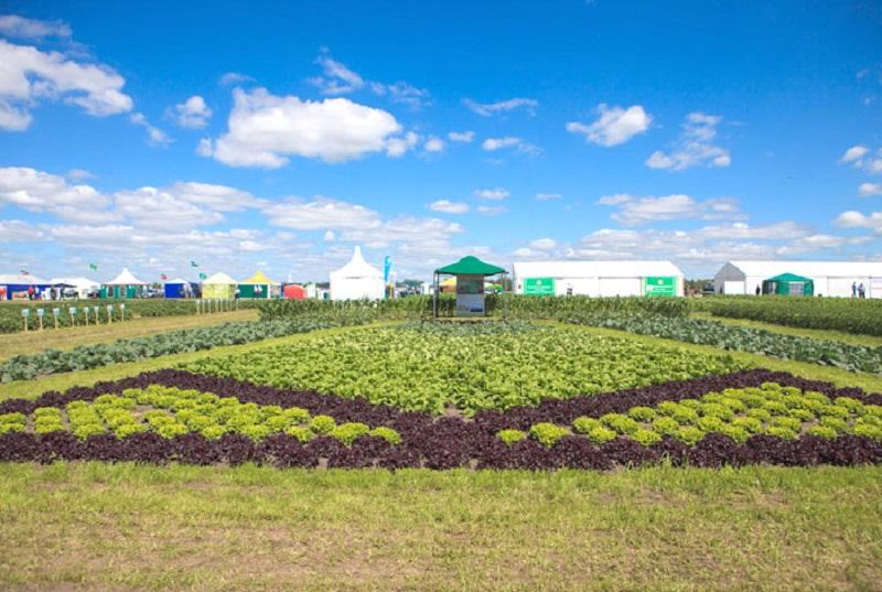 Сельхозпредприятие из Кировской области награждено медалью