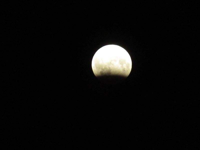 Жители Кировской области наблюдали лунное затмение (+ФОТО)