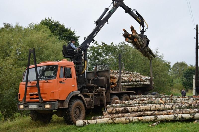 В Кировской области ветераны Великой Отечественной, инвалиды и Герои России получат дрова бесплатно