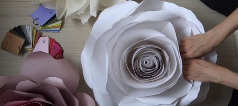 Сотрудники кировского ТЮЗа просят приносить в театр розы