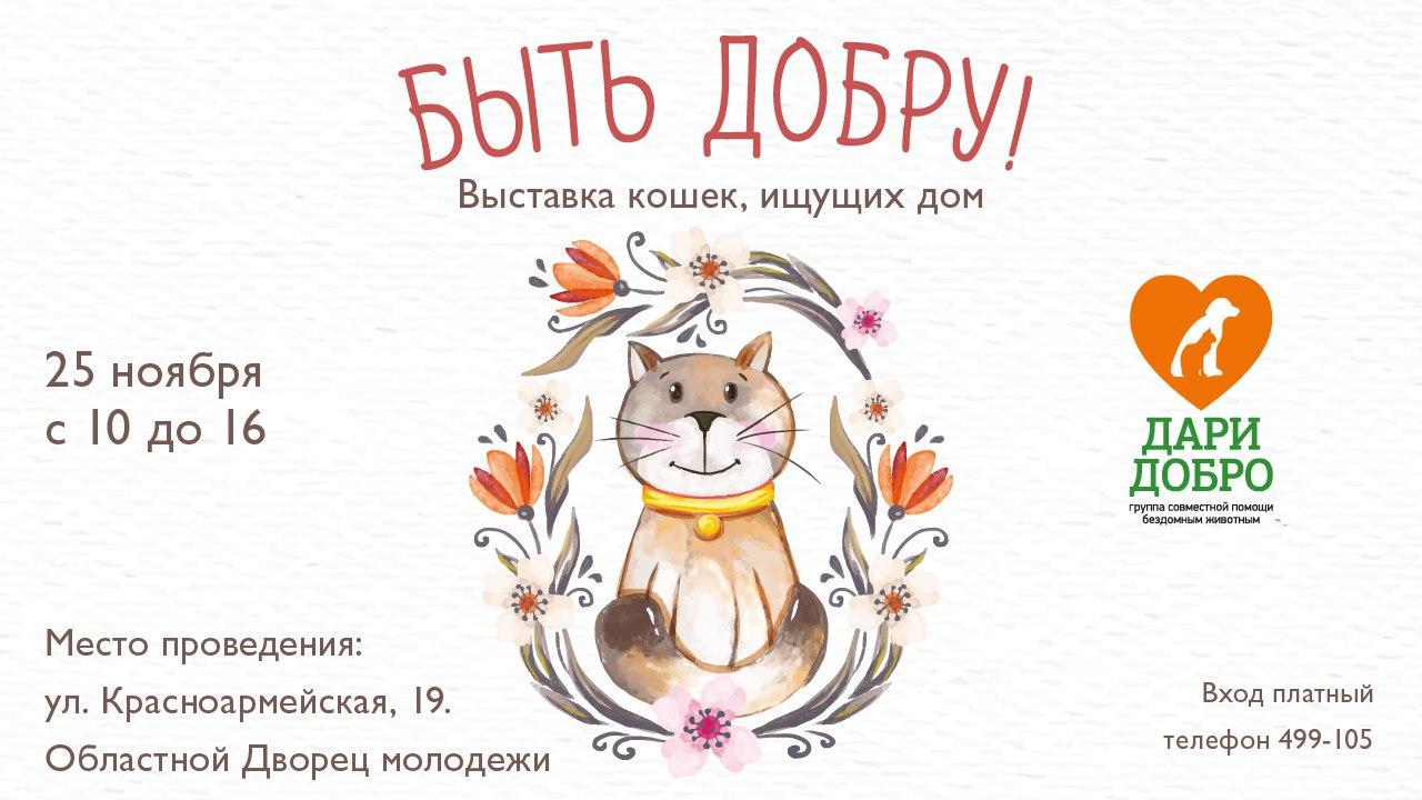 В выходные в Кирове пройдет выставка животных, ищущих дом
