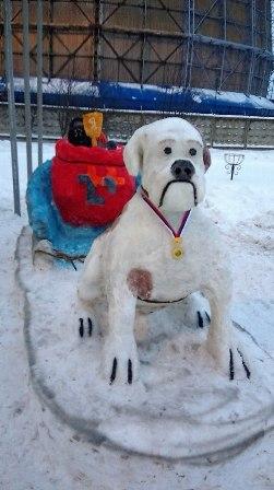На проходной Кировской ТЭЦ-5 завели пса-спортсмена