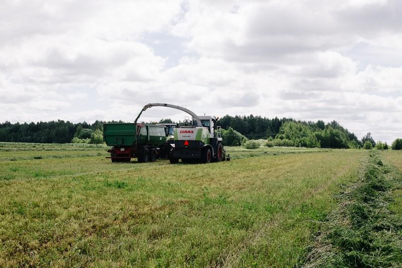 В «Дороничах» набирает темпы заготовка кормов