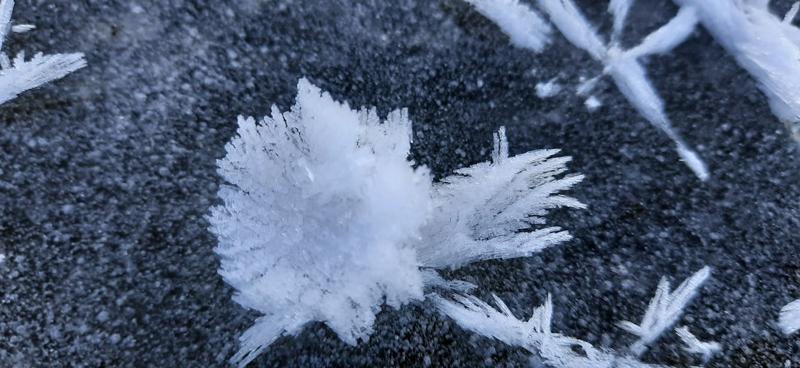 В Кировской области выросли ледяные цветы