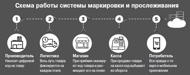 Обязательная маркировка шин в России: подробности