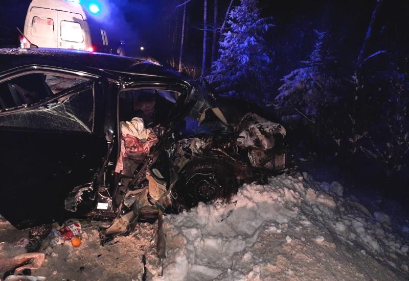 В Кировской области водитель иномарки устроил ДТП и погиб