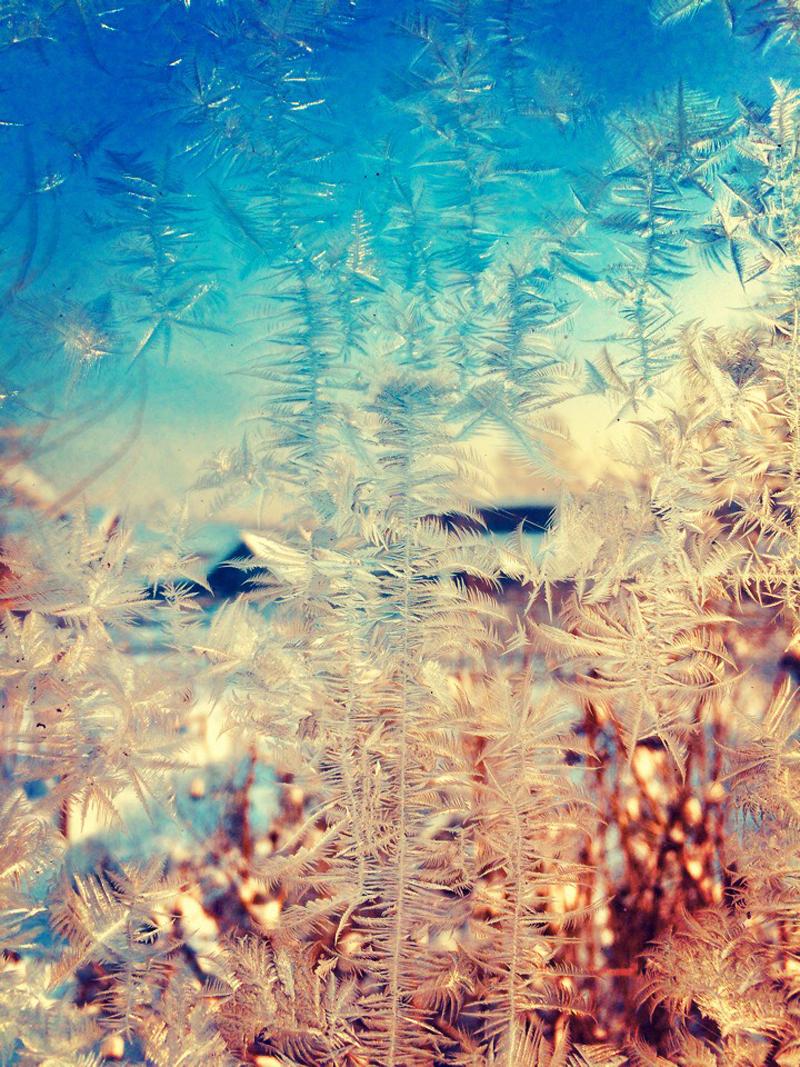 Жители Кировской области делятся морозными узорами в соцсетях (ФОТО)