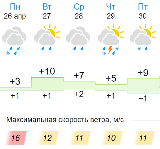 В Кирове выпадет снег с дождем