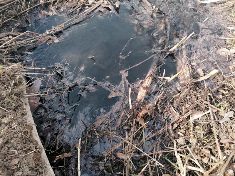 Рядом с горящей свалкой в Котельничском районе бегут черные воды