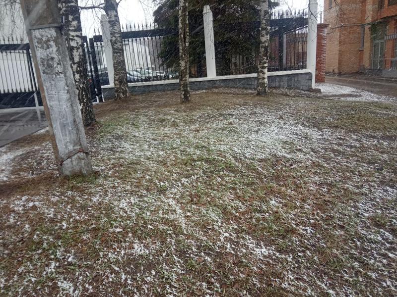 В Кирове выпал снег