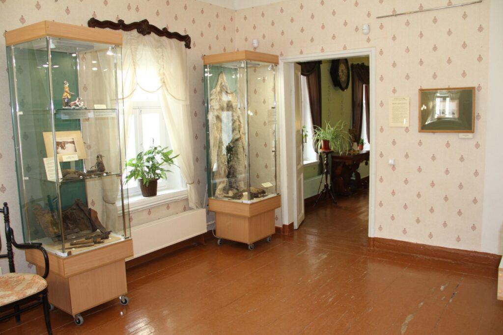 В музее Салтыкова-Щедрина открыли необычную выставку