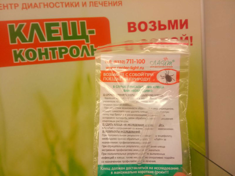 В магазинах Кирова бесплатно раздают пробирки для клещей