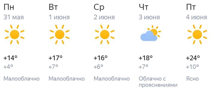 Лето в Кирове начнется с сухой и прохладной погоды