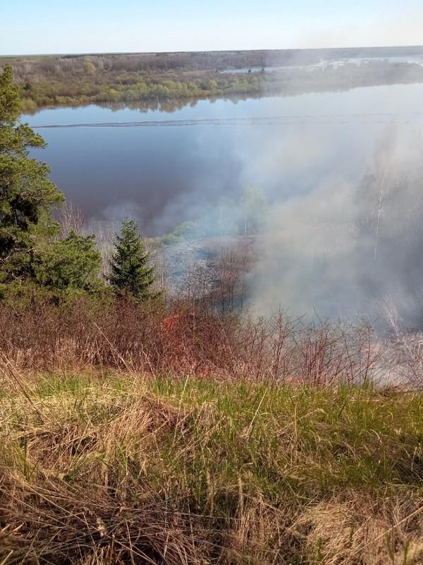 В Кировской области произошёл крупный лесной пожар