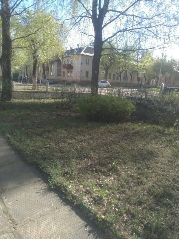 Благодаря приёмной губернатора на сайте «Кировская правда» регион становится чище