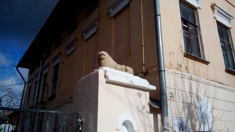 В Кирове пропали львы