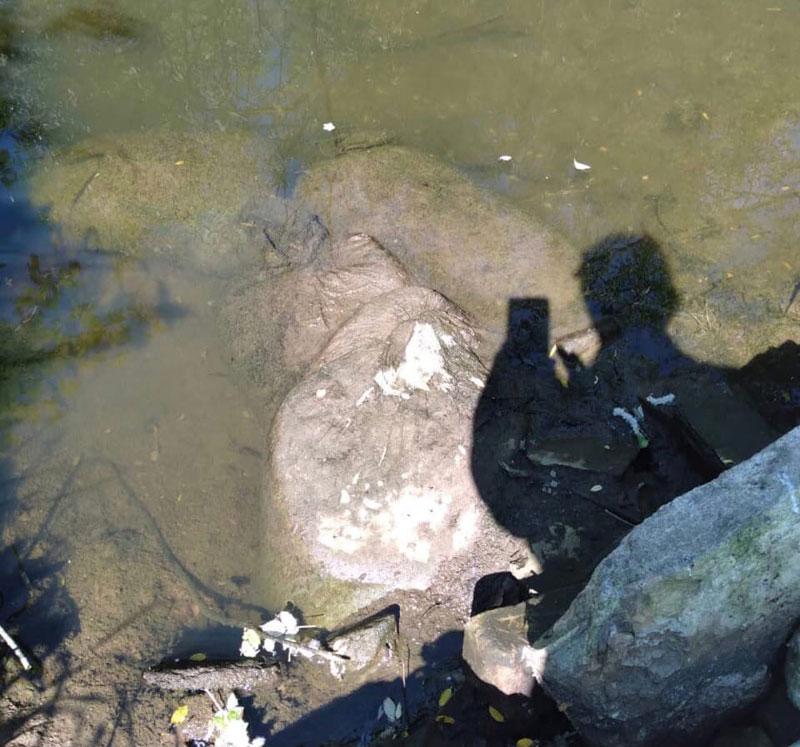 Реку Чахловицу перегородили бетонными блоками