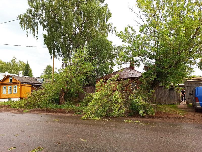 Во время грозы в Слободском дерево упало на дом