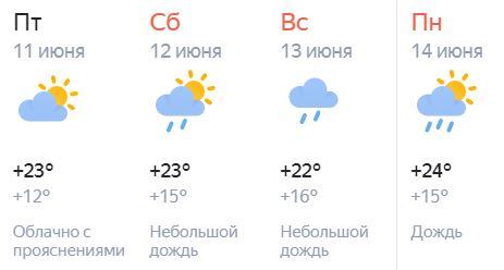 В праздничные дни кировчан ждут дожди