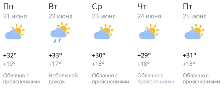 30 градусов и выше: в Киров идет сильная жара