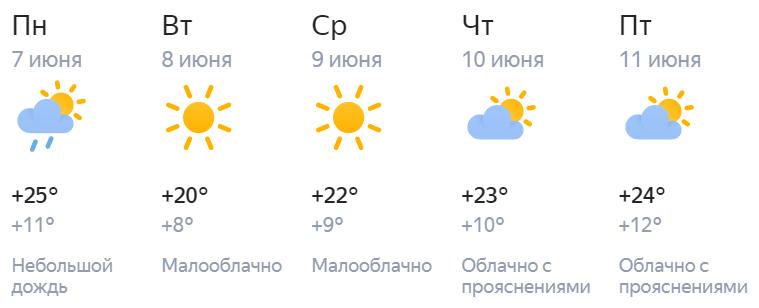 В Кирове рабочая неделя будет по-летнему теплой