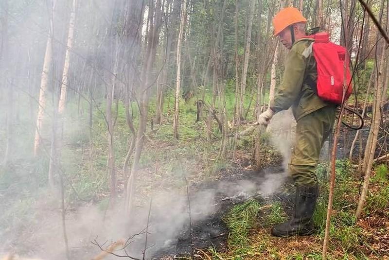 Кировчанин рассказал, как тушит лесные пожары
