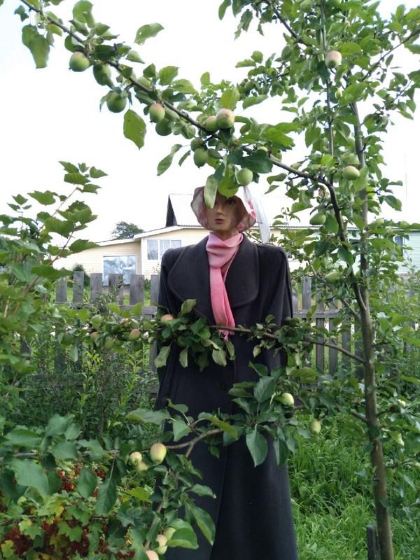 Пугало привлекло внимание жителей Верхошижемского района