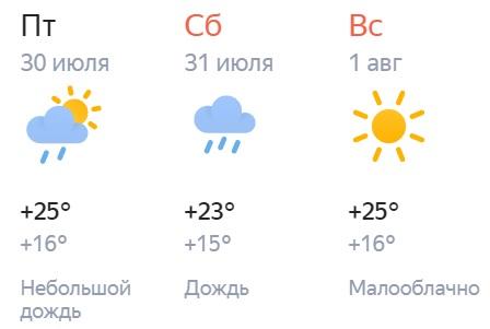 1 августа в Кирове будет тепло