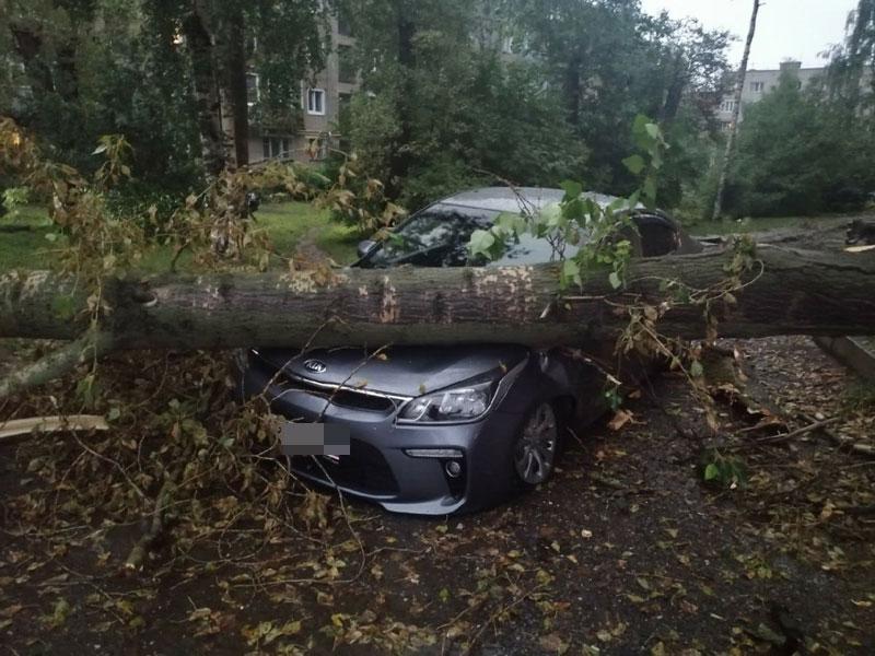 Аварийные службы ликвидируют последствия урагана в Кирове